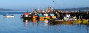 Fischerboote im Hafen von Ancud (Chiloé)